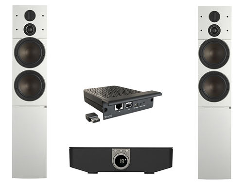 Dali Callisto 6 C in weiß inkl. Sound Hub und Streaming